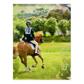 Eventing Horse Postcard