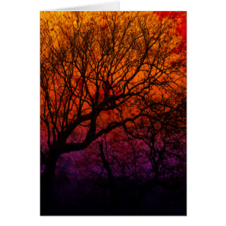 Ever After, Trees Silhouette Purple Orange Red Sky Card