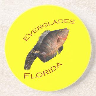 Everglades, Florida Coaster