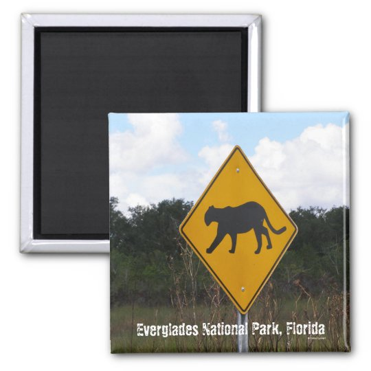 Everglades National Park, Florida Square Magnet