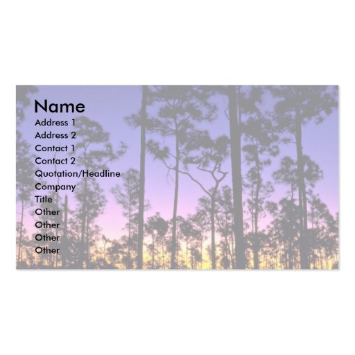 Everglades National Park, Pinelands Area, Florida Pack Of Standard Business Cards