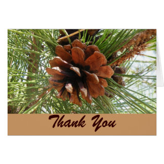Evergreen and Pinecone Thank You Card