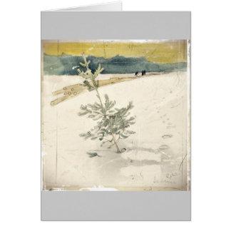 Evergreen Card
