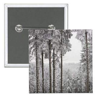Evergreen forest in winter 15 cm square badge
