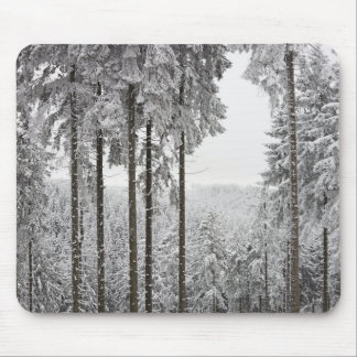Evergreen forest in winter mouse mat