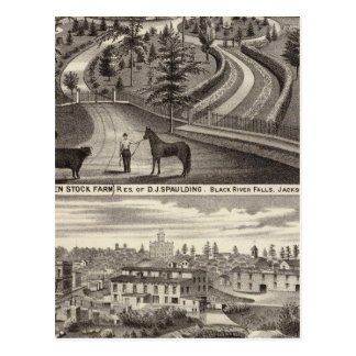 Evergreen Stock Farm, res Postcard