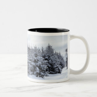 Evergreen trees and road in snow Two-Tone coffee mug