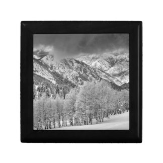 Evergreens and Aspen trees in a snow storm Gift Box