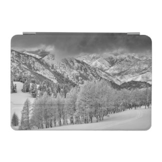 Evergreens and Aspen trees in a snow storm iPad Mini Cover