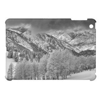 Evergreens and Aspen trees in a snow storm iPad Mini Covers