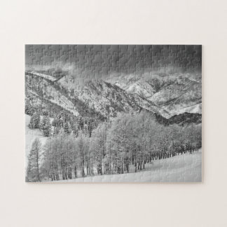 Evergreens and Aspen trees in a snow storm Jigsaw Puzzle