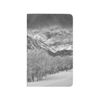 Evergreens and Aspen trees in a snow storm Journals