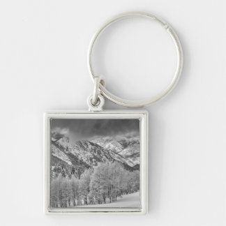 Evergreens and Aspen trees in a snow storm Key Ring