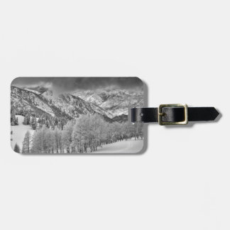 Evergreens and Aspen trees in a snow storm Luggage Tag