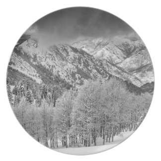 Evergreens and Aspen trees in a snow storm Plate