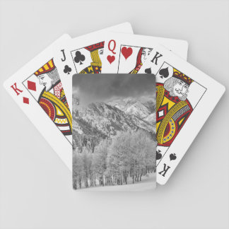 Evergreens and Aspen trees in a snow storm Playing Cards