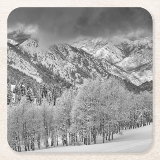 Evergreens and Aspen trees in a snow storm Square Paper Coaster