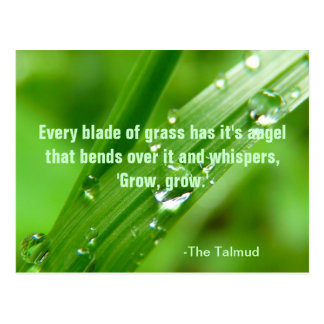 Every Blade of Grass Quote Postcard