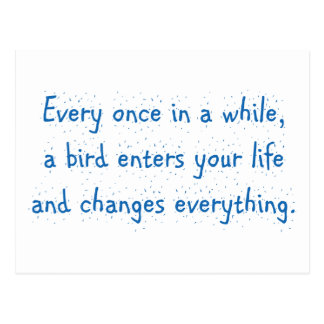 Every Once In A While, A Bird Enters Your Life … Postcard