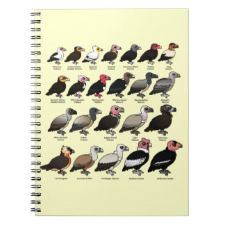 Every Vulture Notebook