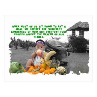 EVERYDAY FOOD CHOICES POSTCARD
