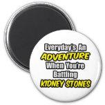 Everyday's An Adventure...Kidney Stones 6 Cm Round Magnet