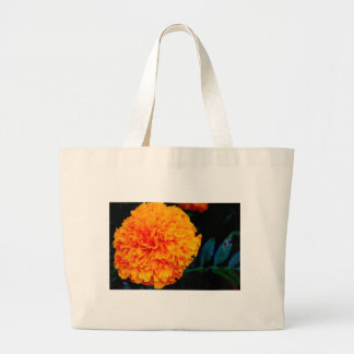 Everything is Beauty Canvas Bag