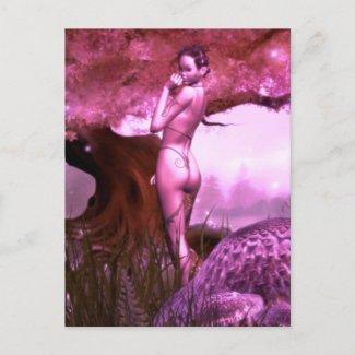 Evia Postcards