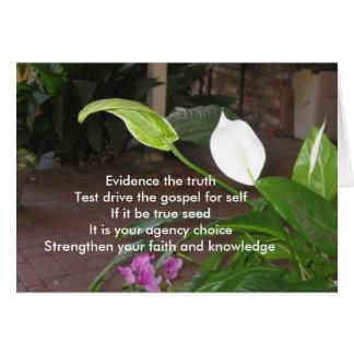 Evidence The Truth Card