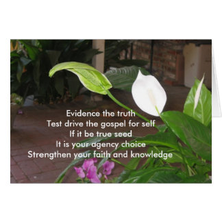 Evidence The Truth Greeting Card