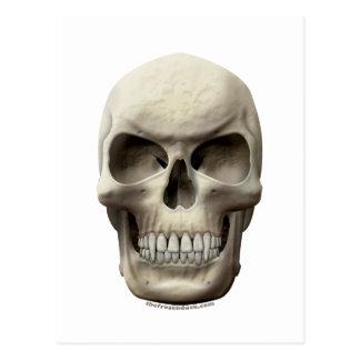 Evil Vampiric Skull Postcard