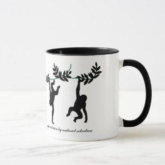 Evolution and the Soul Mug