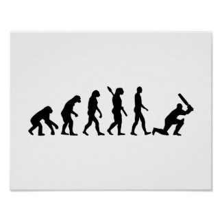 Evolution Cricket Poster