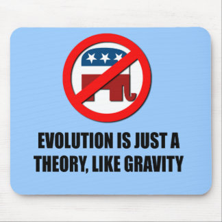 Evolution is just a theory like gravity mouse mat