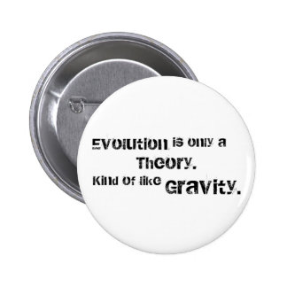Evolution is only a theory pin