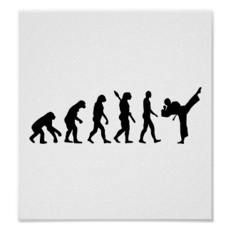 Evolution Karate kickboxing Poster