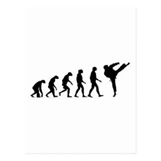 Evolution of Karate Post Card