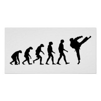 Evolution of Karate Poster