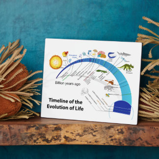 Evolution of Life on Earth Timeline Diagram Display Plaques
