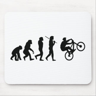 Evolution of the cyclist mouse mat
