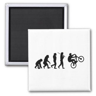 Evolution of the cyclist square magnet