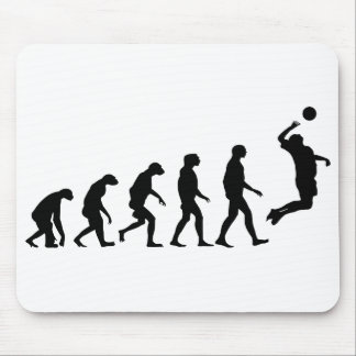 Evolution of Volleyball Mouse Mat