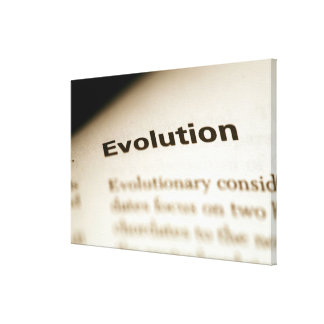 Evolution text on page canvas print
