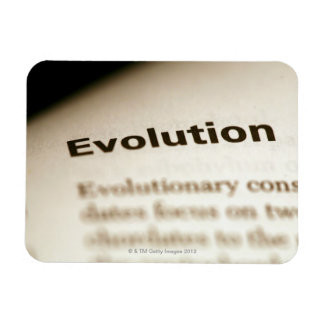 Evolution text on page rectangular photo magnet