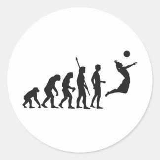 evolution volleyball classic round sticker