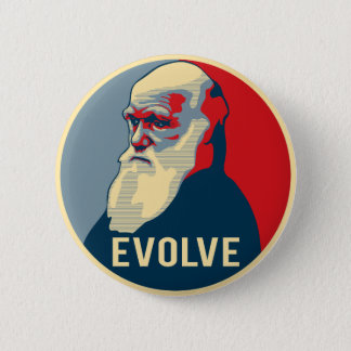 Evolve 6 Cm Round Badge