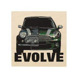 EVOLVE WOOD WALL ART