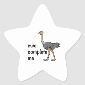 Ewe Complete Me Star Stickers