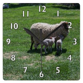Ewe with Twins Wall Clocks