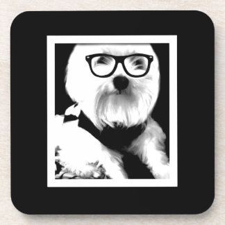 Ewok. Cute maltese with glasses Drink Coasters